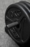 10kg barbell βάρη Στοκ Φωτογραφίες