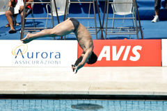 10m Platform Diving at the FINA World Championship Royalty Free Stock Photos