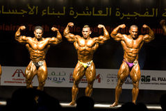10th 2 bodybuilding klassiska fujairah Royaltyfri Fotografi