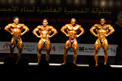 10th 3 bodybuilding klassiska fujairah Royaltyfri Foto