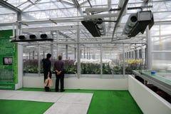 10TH TIOS 2011, DE INTERNATIONALE ORCHIDEE VAN TAIWAN TONEN Royalty-vrije Stock Afbeeldingen
