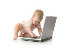 11个婴孩小查出的膝上型计算机 库存图片