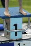 11个池游泳 免版税库存图片