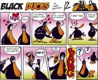 11只黑色可笑的鸭子情节主街上 库存照片