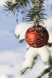 11圣诞节装饰结构树 免版税图库摄影