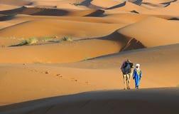 11片沙漠摩洛哥人 库存照片