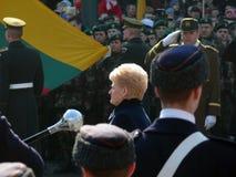 11独立立陶宛行军维尔纽斯 免版税库存照片