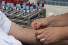 11血液实验室试验 免版税库存图片