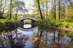 11 ειδυλλιακά Στοκ Εικόνες