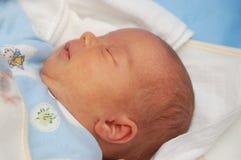 11婴孩 免版税库存照片