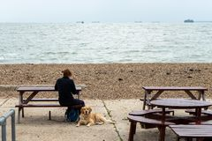 Free 11/02/2019 Portsmouth, Hampshire, UK A Woman Sitting With Her Dog On A Bench At The Seaside Stock Images - 162498454