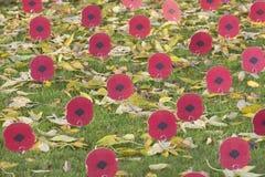 11 2011 Listopad wspominanie Zdjęcia Stock