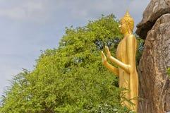 11 buddha standing Royaltyfria Bilder