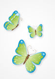11 motyla jpg Fotografia Royalty Free