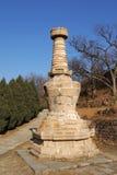 11 yinshan pagodas Arkivbilder