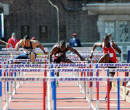 110 meter hurdles at the 2011 Penn Relays Stock Photography