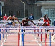 110 metershindernissen bij de 2011 Relais Penn Stock Fotografie