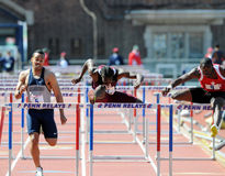 110 metershindernissen bij de 2011 Relais Penn Royalty-vrije Stock Foto's