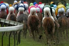 119698_Horses. Horseracing shot from behind with Jockeys in full action Stock Photo