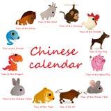 12个动物排进日程汉语 皇族释放例证
