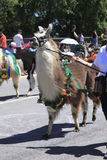 12个每年节日6月游行波特兰上升了 图库摄影