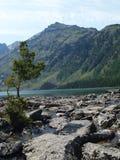 12块平均底部湖mult石头 免版税图库摄影