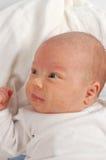 12新出生的子项 图库摄影