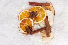 12月气味和香料 免版税图库摄影