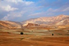 12月沙漠西奈 库存照片