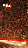 12月f照明仙台 库存图片