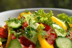 12 λαχανικά σαλάτας Στοκ Εικόνες