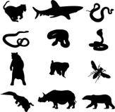12 животных серии убийцы иллюстрация штока