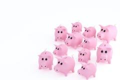 12 розовых свиней иллюстрация штока