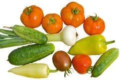 12 свежих овоща Стоковое Изображение