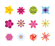 12 abstract flower icons Stock Photo