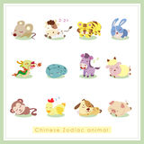 12 cartoon Chinese Zodiac animal stickers Stock Image