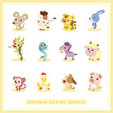 12 cartoon Chinese Zodiac animal stickers. 12 Chinese Zodiac animal stickers,cartoon vector illustration Royalty Free Stock Photos