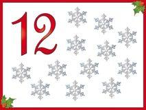 12 dagen van Kerstmis: 12 sneeuwvlokken Royalty-vrije Stock Foto's