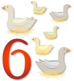 12 dagen van Kerstmis: 6 ganzen het Leggen Royalty-vrije Stock Foto's