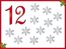 12 days of christmas: 12 Snowflakes. Part twelve of collection 12 day of christmas vector illustration