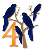 12 Days of Christmas: 4 Calling Birds. Four midnight blue calling birds sit on a bare tree in winter. Part 4 of the 12 Days of Christmas stock illustration
