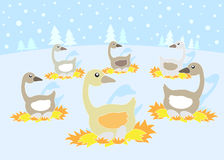 12 Days of Christmas: 6 Geese a Laying. 12 Days of Christmas. Geese a Laying vector illustration