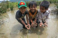 12,Dec,2016 - 3 kids from Churu people near by Dalat- Lam Dong- Vietnam. Some kids of Churu people drafting the fish near by Dalat- Lam Dong- Vietnam Stock Images