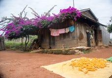 12,Dec,2016 -A house of Churu people near by Dalat- Lam Dong- Vietnam Stock Image