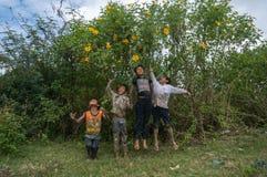 12,Dec,2016 - The kid from Churu people play in flowering shrubs of sunwild flower near  by Dalat- Lam Dong- Vietnam. Some kids of Churu people drafting the fish Stock Images