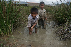12,Dec,2016 - kids from Churu people play in mud, they catching the fish near by Dalat- Lam Dong- Vietnam. Some kids of Churu people drafting the fish near by Stock Photography