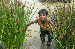 12,Dec,2016 - kids from Churu people play in mud, they catching the fish near by Dalat- Lam Dong- Vietnam. Some kids of Churu people drafting the fish near by Stock Photos