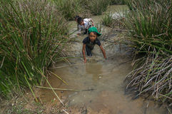 12,Dec,2016 - smile of kids from Churu people play in mud, they catching the fish near by Dalat- Lam Dong- Vietnam. Some kids of Churu people drafting the fish Royalty Free Stock Photo