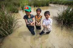 12,Dec,2016 - smile of kids from Churu people play in mud, they catching the fish near by Dalat- Lam Dong- Vietnam. Some kids of Churu people drafting the fish Stock Image