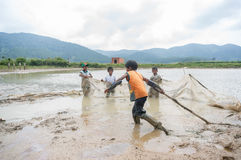 12,Dec,2016 -Some kids of Churu people drafting the fish near by Dalat- Lam Dong- Vietnam. Some kids of Churu people drafting the fish near by Dalat- Lam Dong Stock Photography